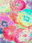 Image 1 of Fluorescent Flowers Poster