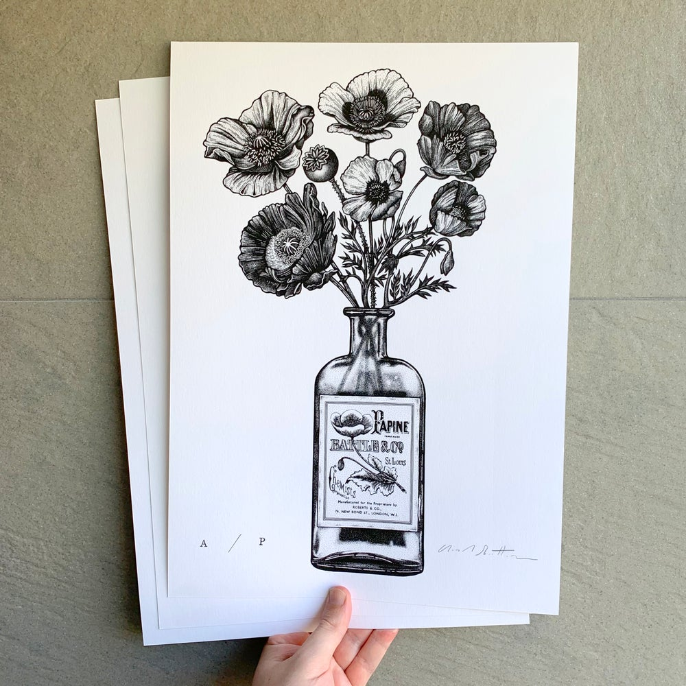 Image of Poppies & Opium