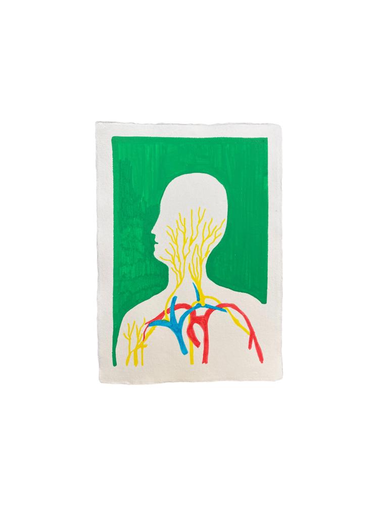 Image of Anatomija, 2021