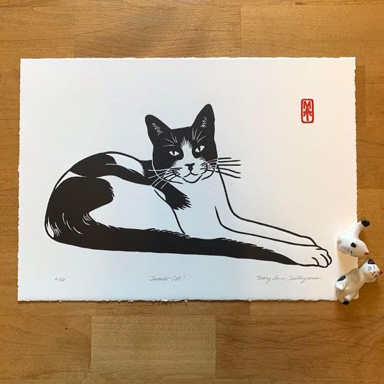 Image of Tuxedo Cat