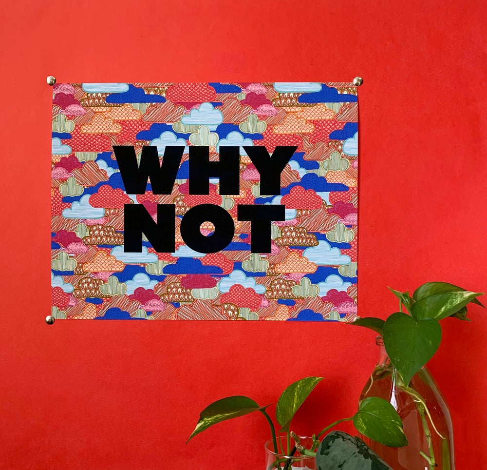Image of Why Not - 11 x 14 print