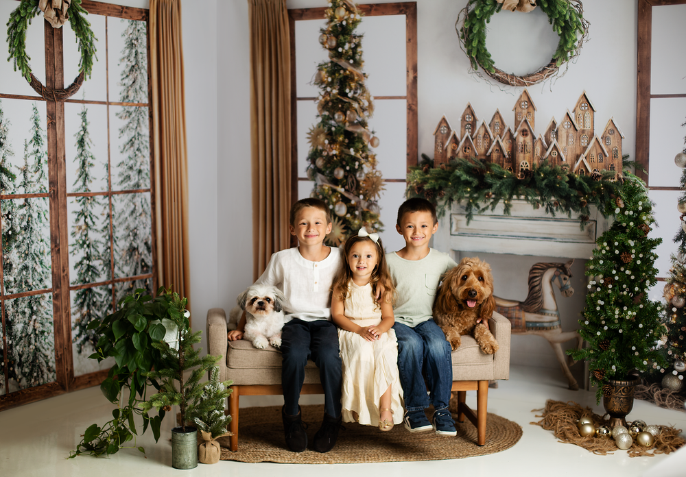 Image of 2021 Christmas Mini Sessions - 15 minute session + 2 digital images