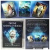 ORACLE CARDS (assorted 3)