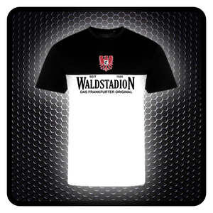 Image of TSBW Waldstadion seit 1925