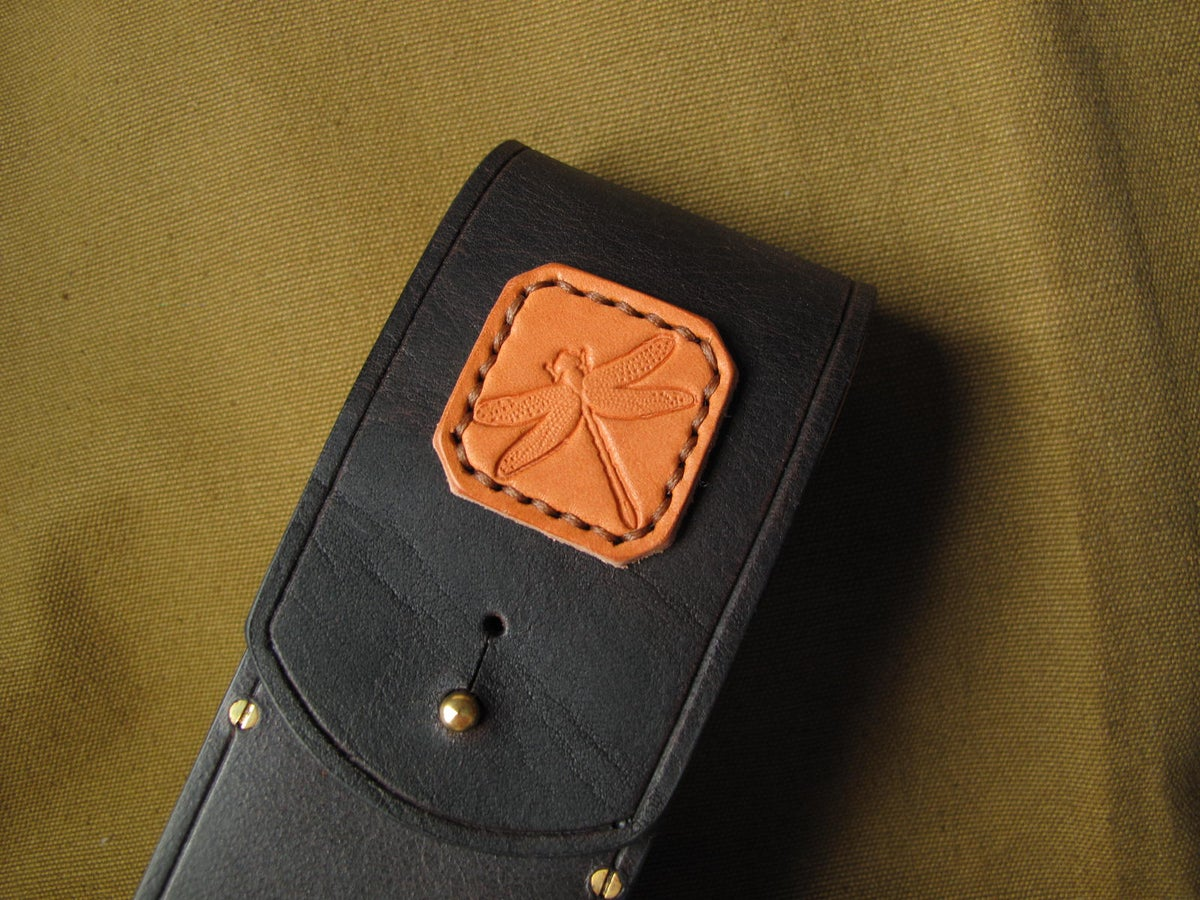 Image of The dragonfly float case (1)
