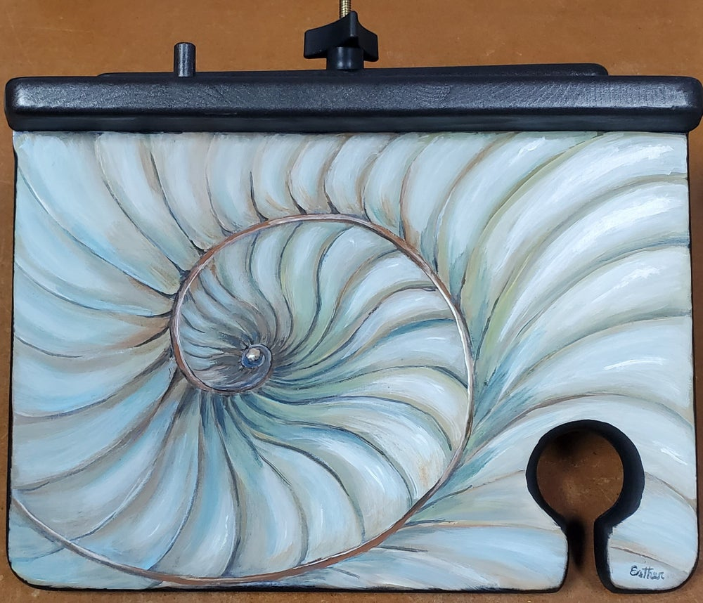 Image of Ammonite by Steve and Esther Scott