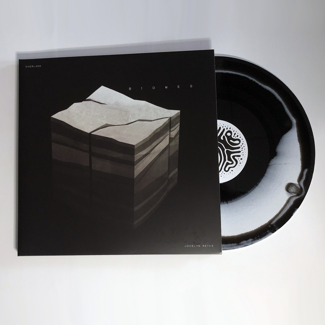 Image of Limited Edition OVERLAND Vinyl