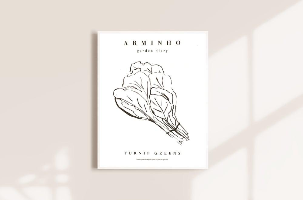 Image of Turnip Greens - Garden vegetables by Arminho
