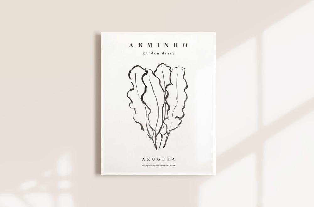 Image of Arugula - Garden vegetables by Arminho