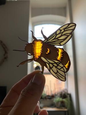 Image of Little Bee Light Catcher