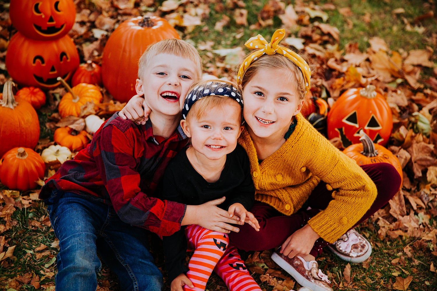 Image of October 2nd Willow Farm Park Minis - Deposit Only