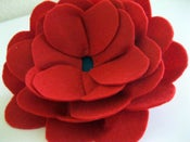 Image of Big Poppy Bloom