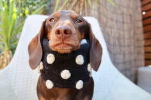 Image of Wool Spotted Snood
