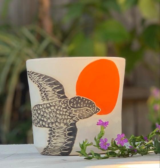 Image of Moonrise Swift