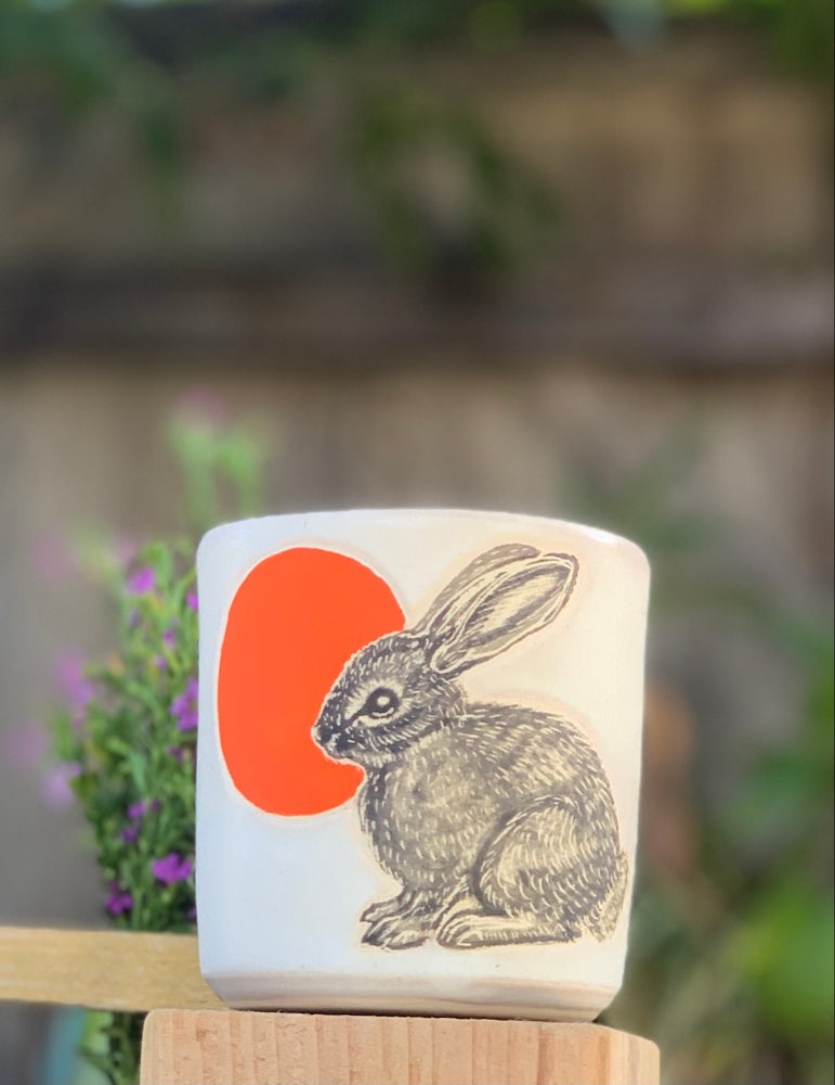 Image of Moonrise Bunny