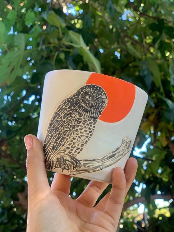 Image of Moonrise Owl