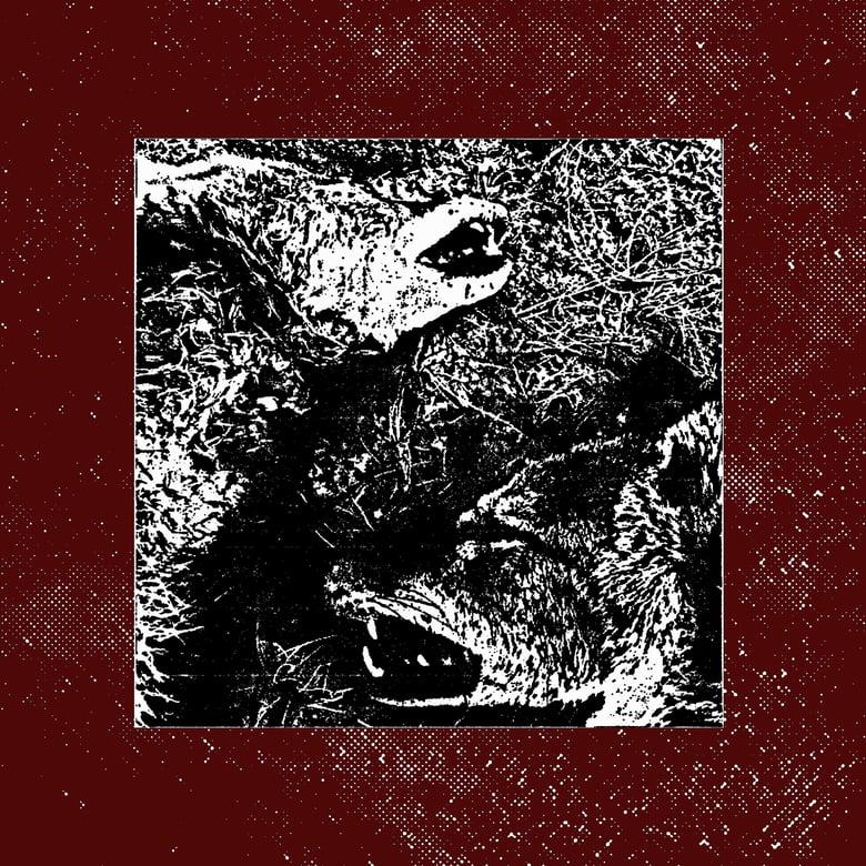 "Image of PRE-ORDER SEC33: CLOSE COMBAT - ""New Leash On Life"" 7"""