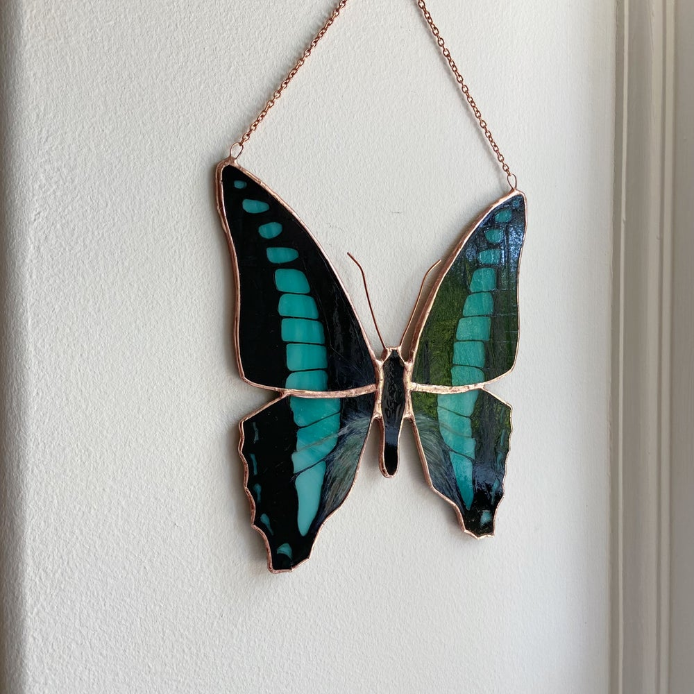 Image of Blue Triangle Butterfly