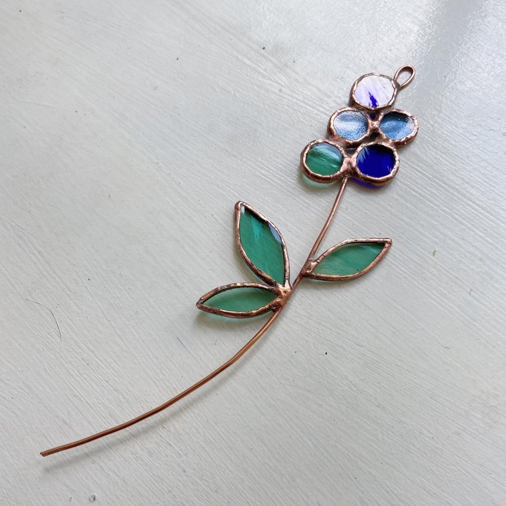 Image of Blueberry Posie no.3