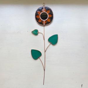 Image of Sunflower Stem no.3