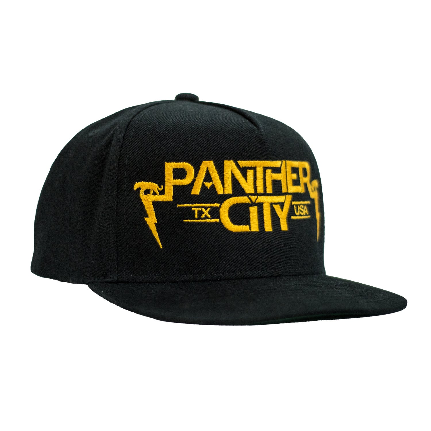 Image of Panther City Snapback