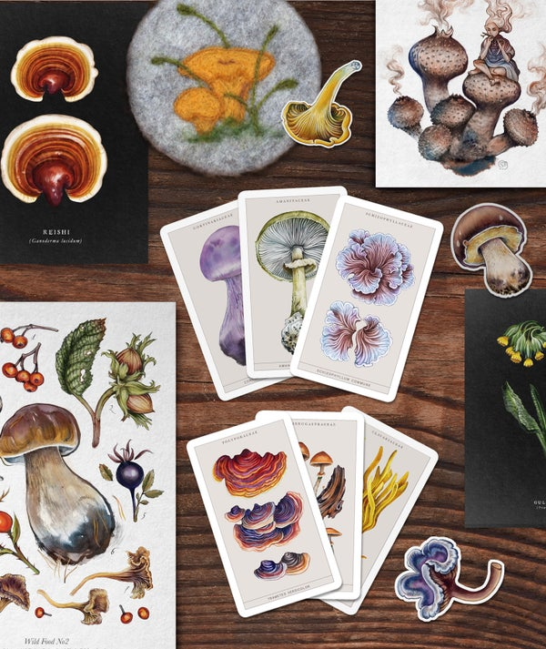 Image of DELUXE Flora & Fungi Mystery Mix