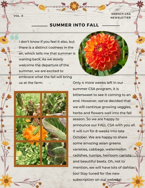 Image of End  of summer to fall 8 week csa add on!
