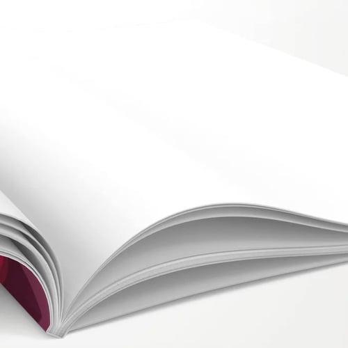 Image of Ogimaakwe Journal (2 Pack)