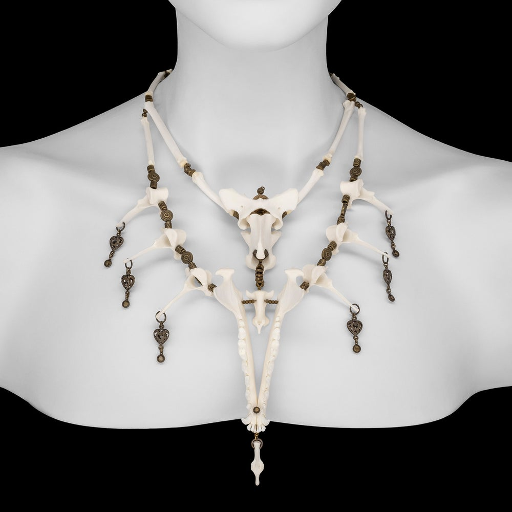 "Image of ""Kalas"" Fox Bone Necklace"