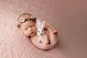 Image of Angora Bunny Lovie - 5 colors