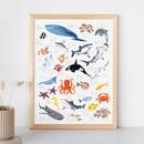 Image 1 of Ocean Alphabet Print