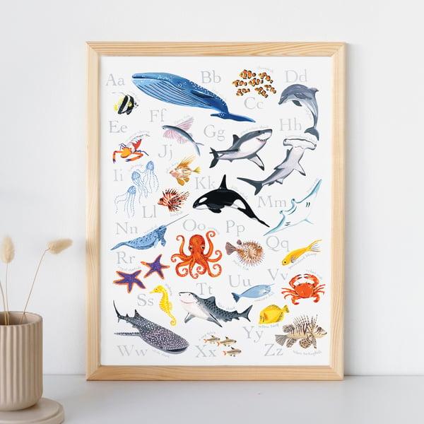 Image of Ocean Alphabet Print