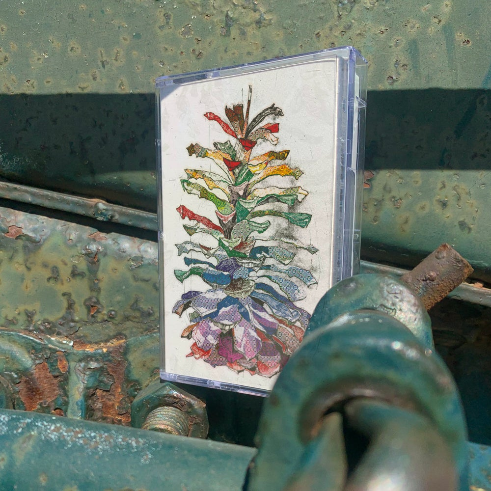"""Joan of Arc presents """"Pine Cone"""" by Tim Kinsella • Full-Length Cassette Tape"""