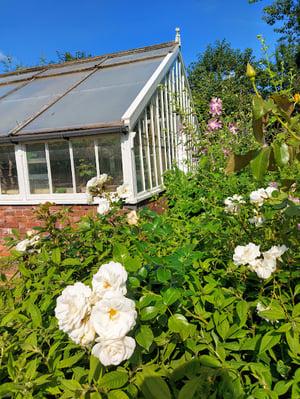 Image of Cutting Garden Workshop Day