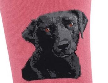 Image of Black Lab Socks