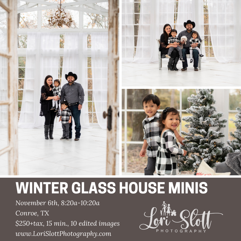 Winter Glass House Mini Sessions