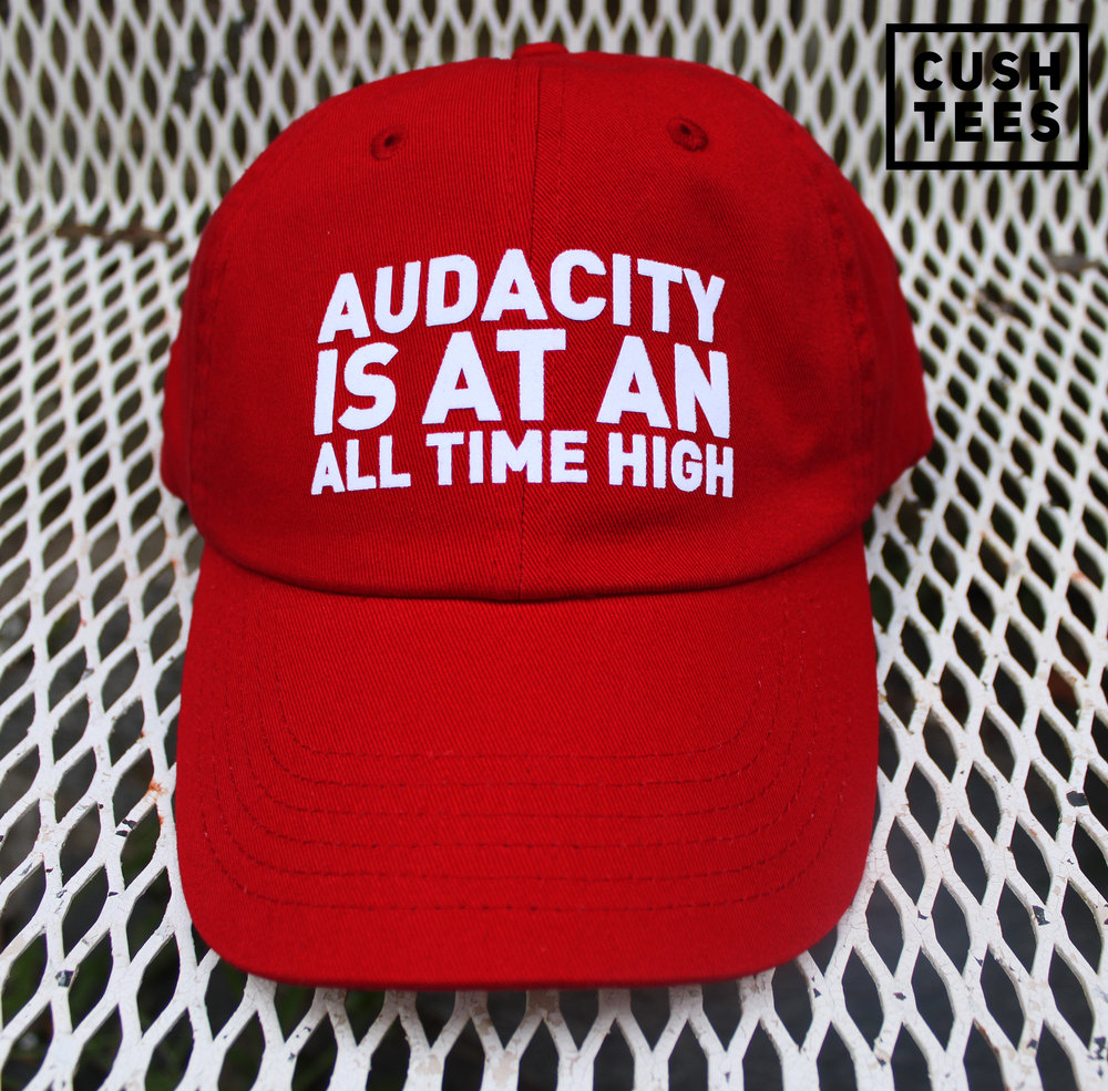 Audacity is at an all time high (Dad Hat)