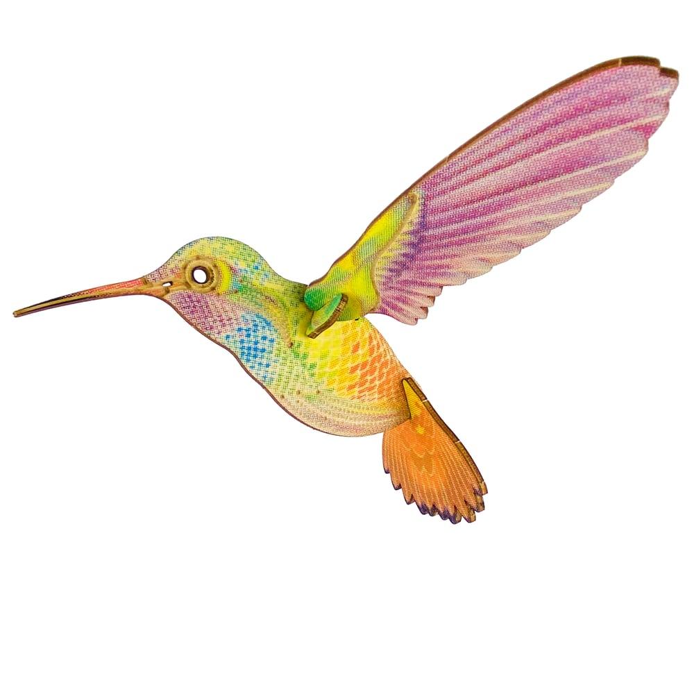 Image of JCR BIRDS : RUFOUS-TAILED HUMMINGBIRD