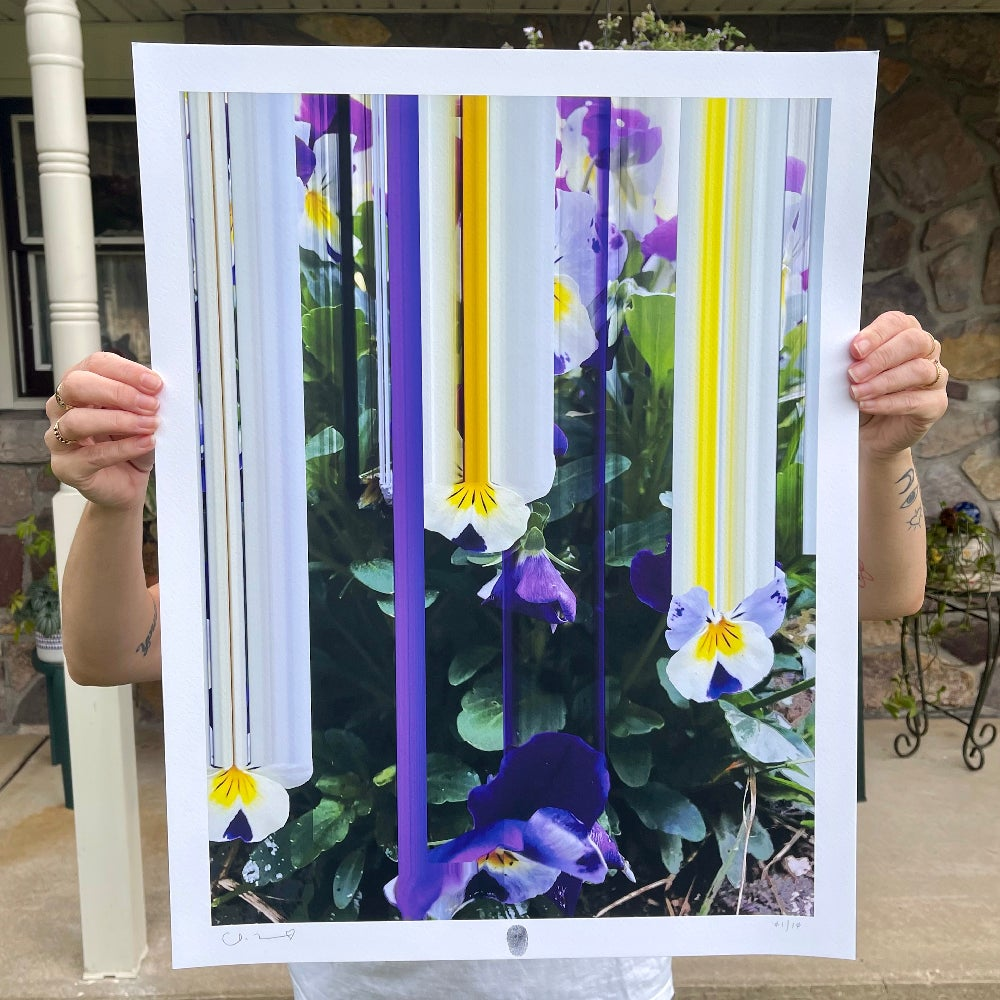 Image of Flowers Against Humanity 007 Limited Edition Giclée Fine Art Print