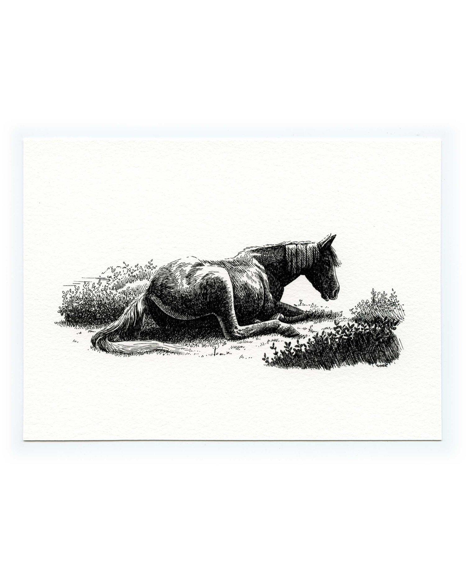 Rest — Signed Fine Art Print