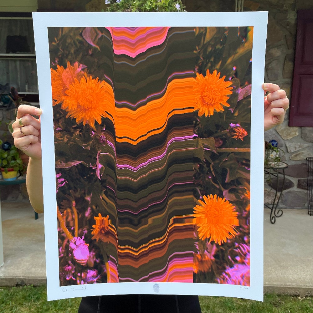 Image of Flowers Against Humanity 010 Limited Edition Giclée Fine Art Print