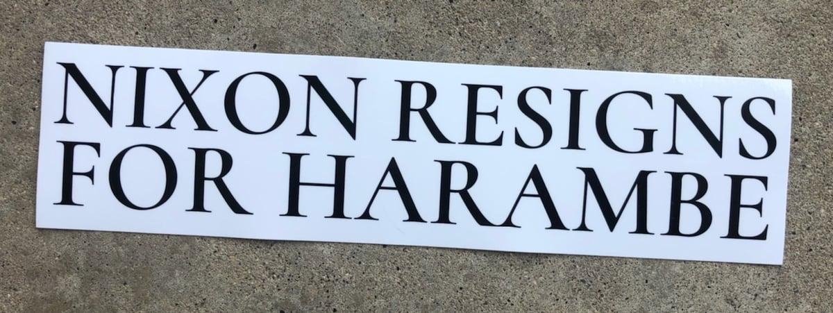 NIXON RESIGNS FOR HARAMBE