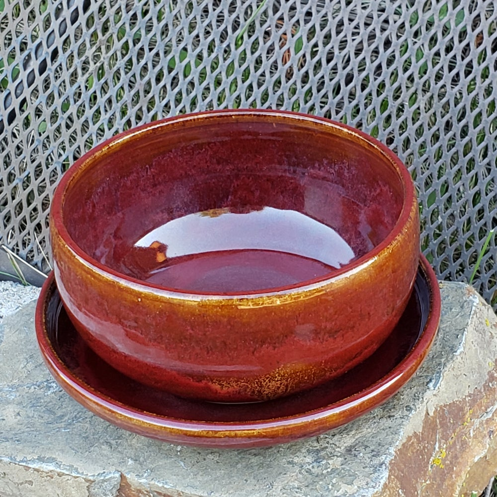Image of Bowl and Plate 2-piece set: Red Osier ( Red)