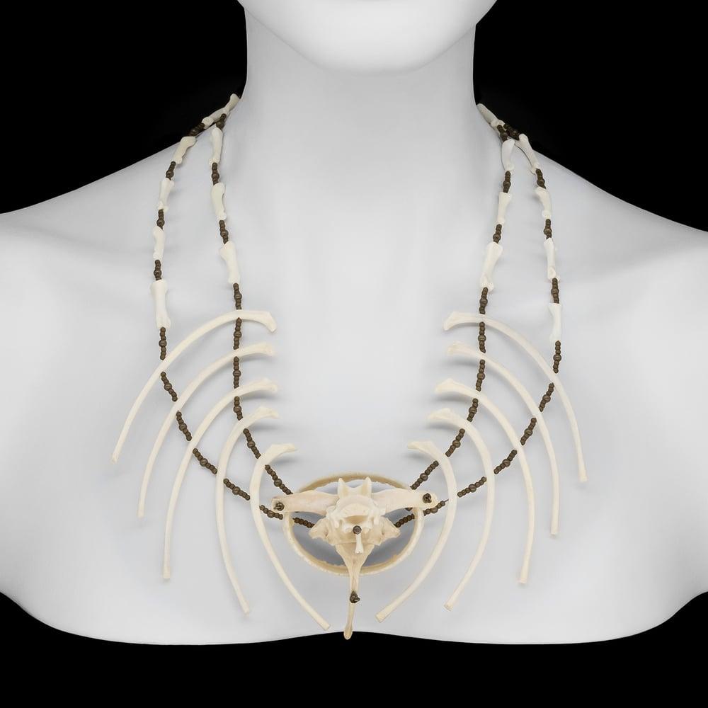 "Image of ""Amara"" Armadillo and Raccoon Bone Necklace"