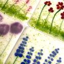Flower Garden Coasters Set