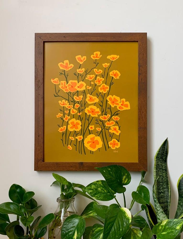 Image of Poppies-11 x 14 print