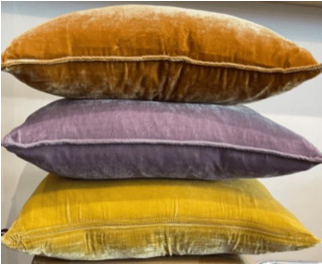 Image of Velvet Cushion NEW