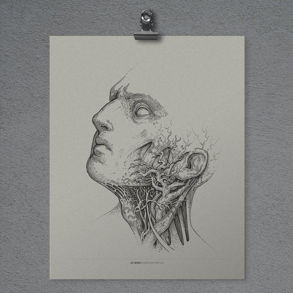 Image of Weird Anatomy 001 - Print
