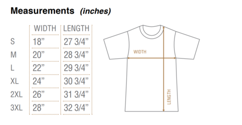 Image of Angel's Wish Tshirt