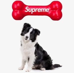 Image of Supreme Dog Bone Red